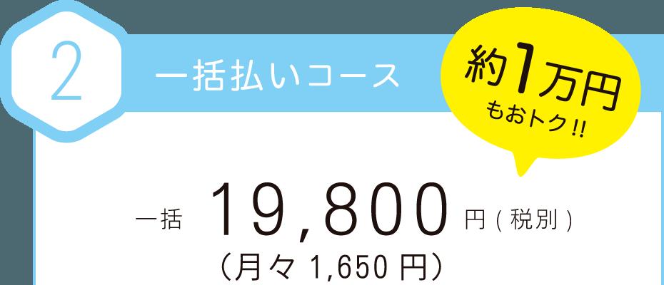 一括払いは、19800円